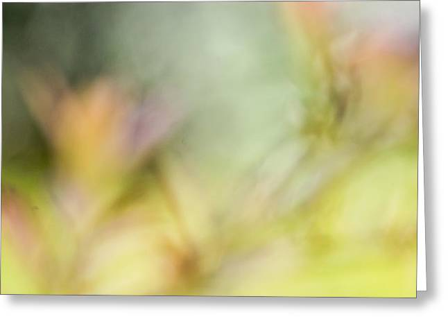 Abstract Blueberries Greeting Cards - Renewal Of Spring  Greeting Card by Heidi Smith
