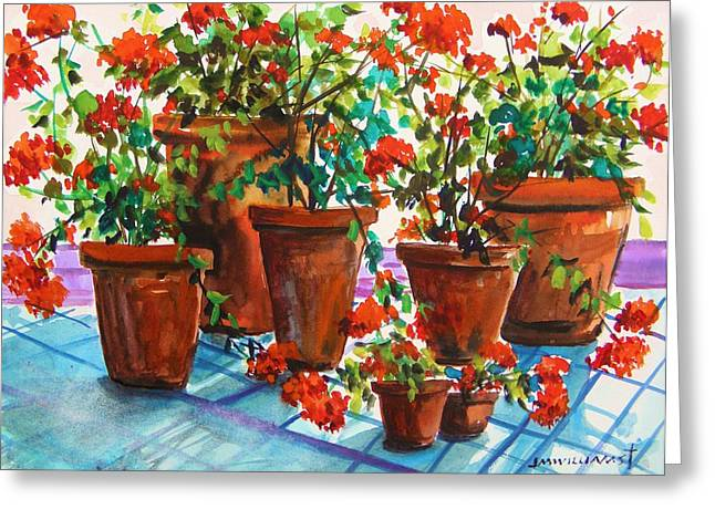 Jmwportfolio Drawings Greeting Cards - Repotted Geraniums by John Williams Greeting Card by John  Williams