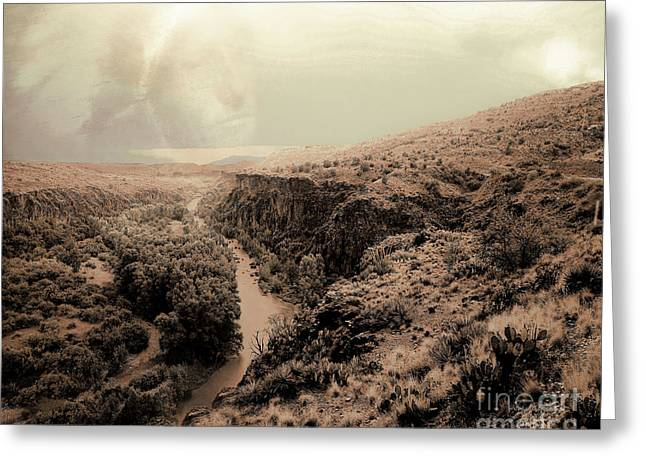 Monsoon Greeting Cards - Requiem Greeting Card by Arne Hansen