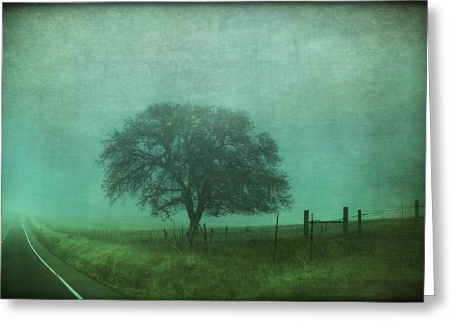 Rural Road Greeting Cards - Resolution Greeting Card by Laurie Search