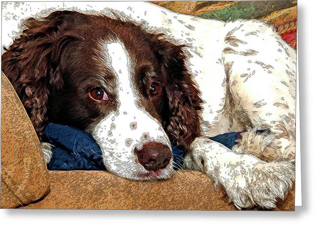 Dog Greeting Cards Digital Greeting Cards - Rest Time For Bella Greeting Card by James Steele