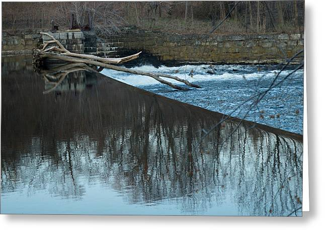 Blackstone River Greeting Cards - Resting Limbs Greeting Card by Barry Doherty