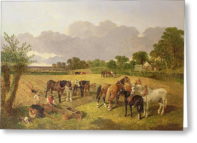 Frederick Greeting Cards - Resting Plough Team Greeting Card by John Frederick Herring Snr