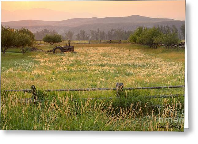Salmon River Idaho Greeting Cards - Retired Tractor Greeting Card by Idaho Scenic Images Linda Lantzy