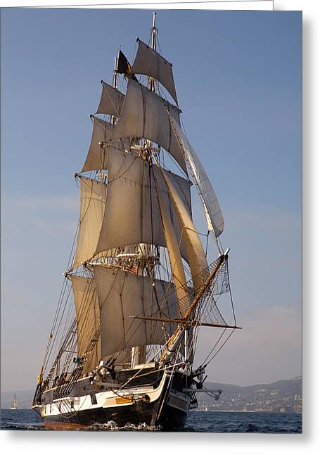 Tall Ships Greeting Cards - Return of the Pilgrim Greeting Card by Cliff Wassmann