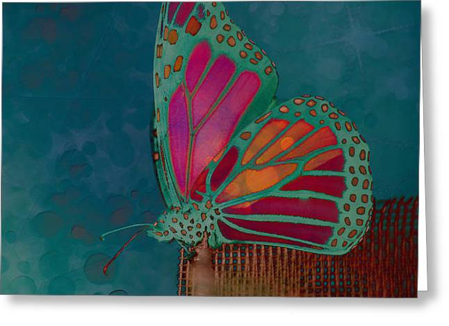 Reve de Papillon - s04bt02 Greeting Card by Variance Collections