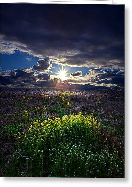 Geographic Greeting Cards - Reverence Greeting Card by Phil Koch