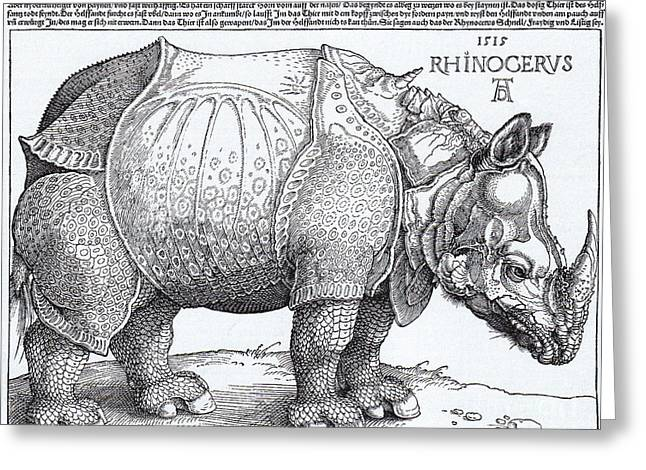Conversations Drawings Greeting Cards - Rhinoceros - Woodcut Greeting Card by Pg Reproductions