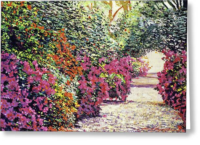 Featured Art Greeting Cards - Rhododendron Pathway Exeter Gardnes Greeting Card by David Lloyd Glover