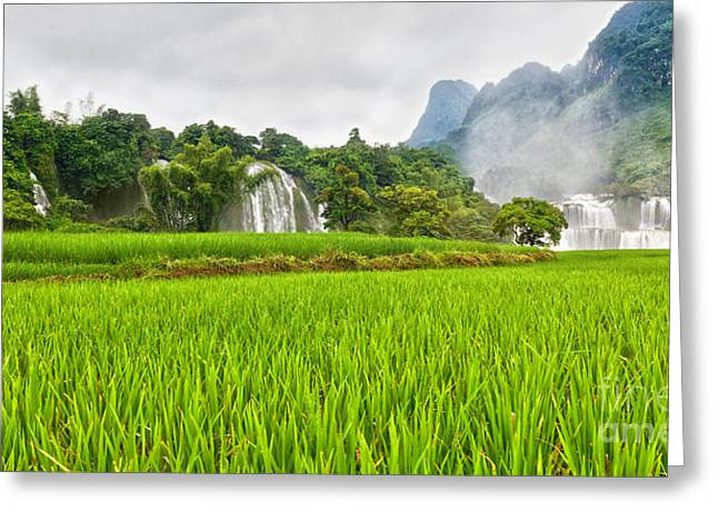 Banyue Greeting Cards - Rice field and waterfall Greeting Card by MotHaiBaPhoto Prints