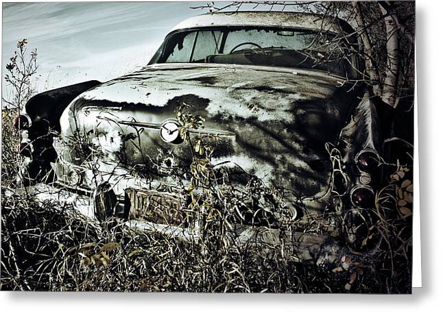 Edmonton Photographer Greeting Cards - Ride Of Abandonment  Greeting Card by Jerry Cordeiro