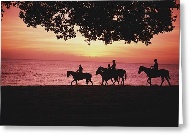 Silhouettes Of Horses Greeting Cards - Riding Horses On The Beach At Sunset Greeting Card by Axiom Photographic
