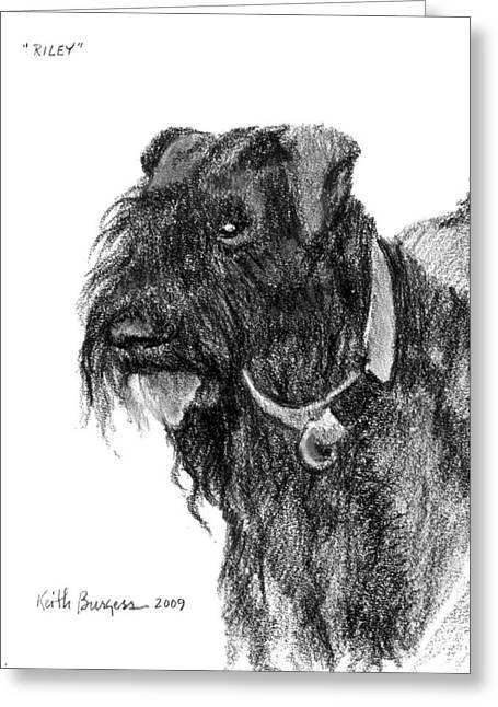 Bred Drawings Greeting Cards - Riley Greeting Card by Keith Burgess