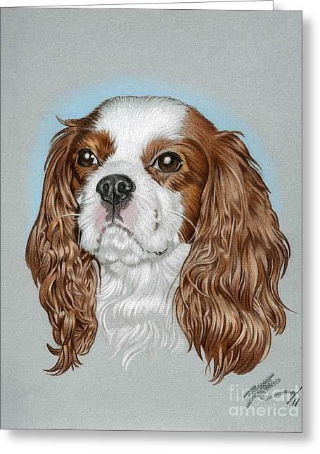 Spaniel Drawings Greeting Cards - Riley Greeting Card by Marshall Robinson