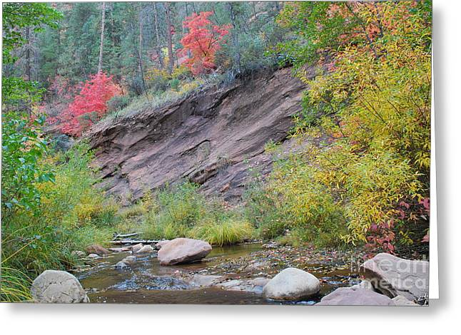 West Fork Greeting Cards - Rimmed in Red Horizontal Greeting Card by Heather Kirk