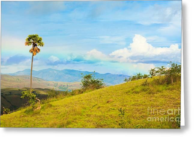 Park Scene Greeting Cards - Rinca island. Greeting Card by MotHaiBaPhoto Prints