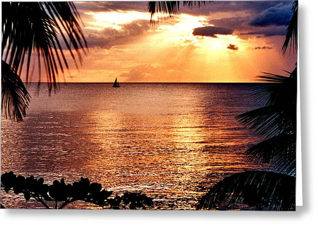 Rincon Beach Greeting Cards - Rincon Sunset Greeting Card by Michael  Cryer
