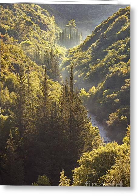 Gorges Greeting Cards - Rindomo Gorge Greeting Card by Richard Garvey-Williams
