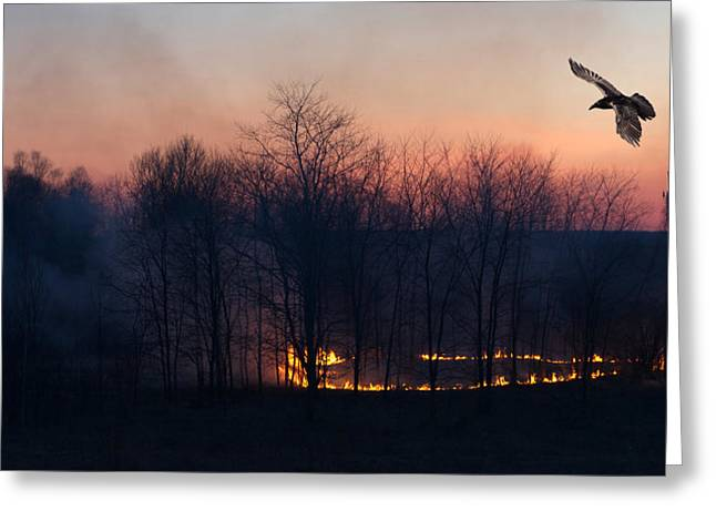 Ring Of Fire. Greeting Card by Kelly Nelson