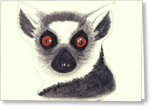 Lemur Greeting Cards - Ring Tailed Lemur Greeting Card by Julie L Hoddinott