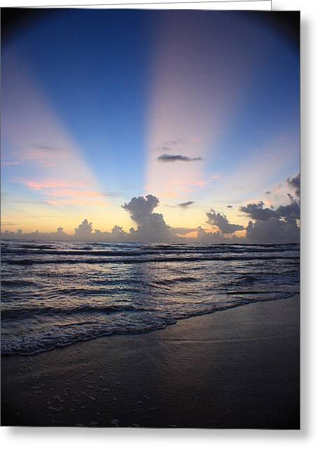 Rise And Shine II Greeting Card by Mandy Shupp