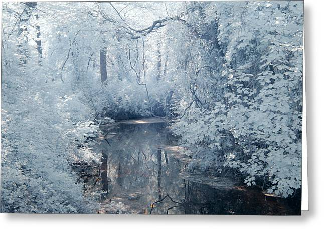 Infer Greeting Cards - River Blues Greeting Card by Steve Gravano