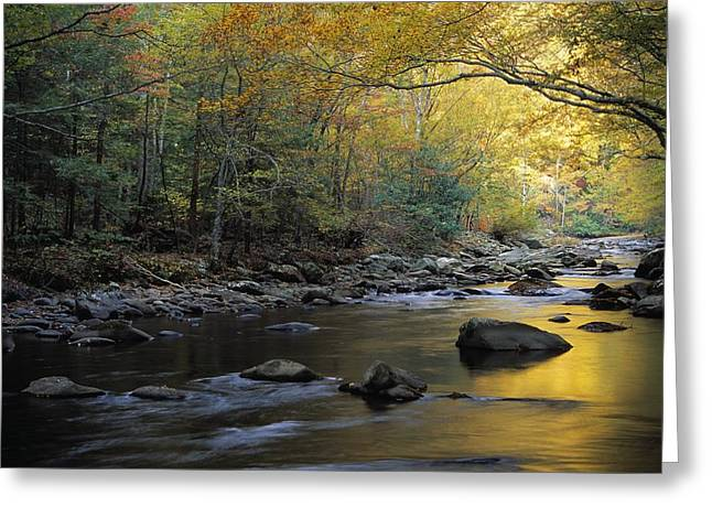 River Flowing Over Rocks, Greenbrier Greeting Card by Natural Selection Robert Cable