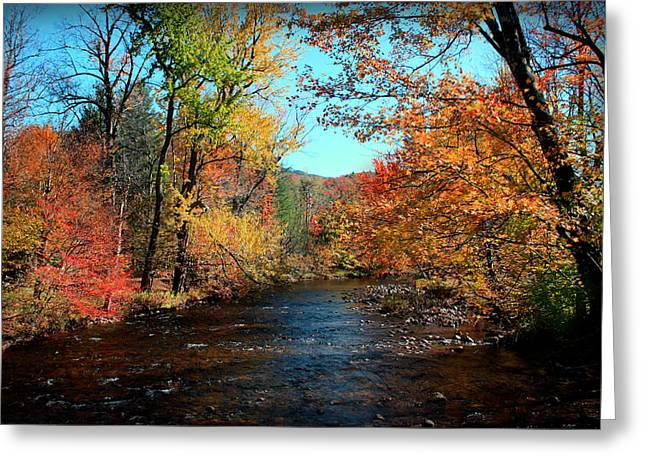 River View Digital Art Greeting Cards - River Forever  Greeting Card by Mark Ashkenazi