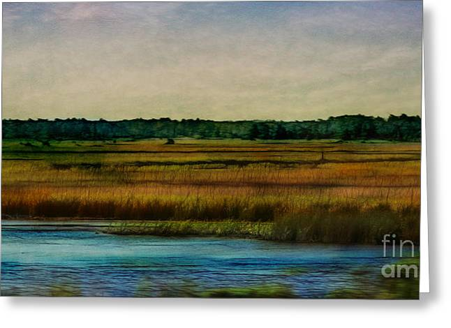 River Of Grass Greeting Card by Judi Bagwell