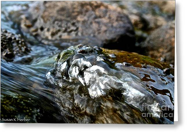 Rush-bed Greeting Cards - River Rock Greeting Card by Susan Herber
