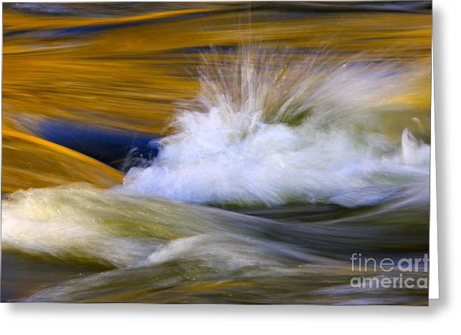 Flowing Greeting Cards - River Greeting Card by Silke Magino