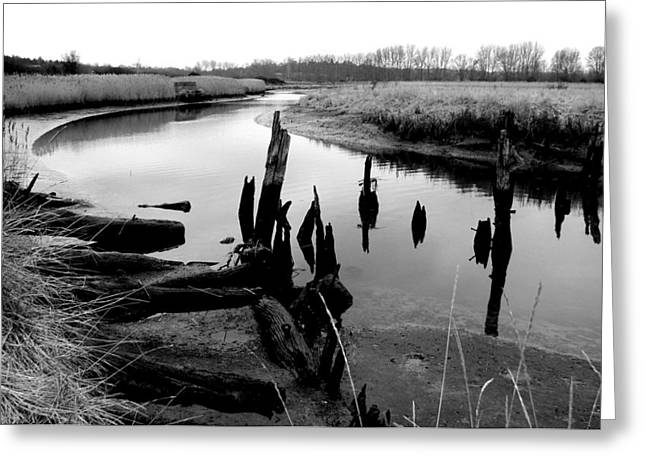 Dedham Greeting Cards - River Stour Greeting Card by Artur Sula