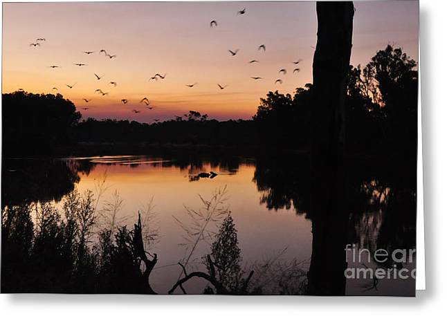Reflection In Water Greeting Cards - River sunset Greeting Card by Kaye Menner
