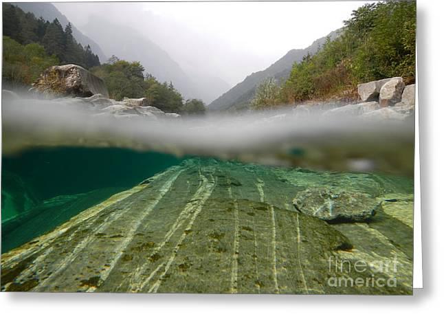River surface Greeting Card by Mats Silvan