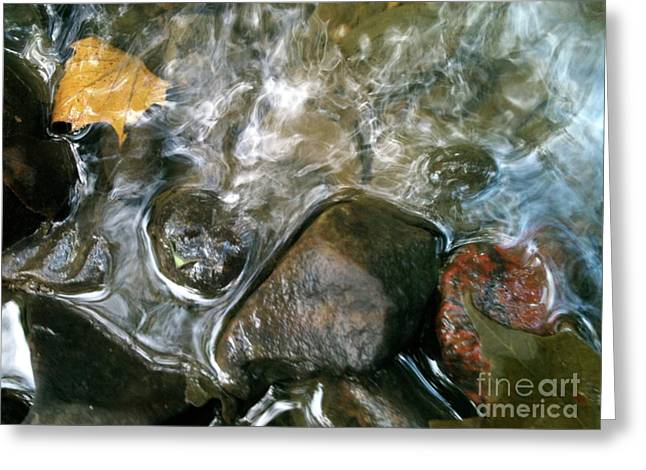 Black Rock Yellow Leaves Water Greeting Cards - River swirls Greeting Card by Trish Hale