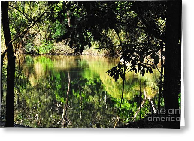 Green And Yellow Greeting Cards - River through the Trees Greeting Card by Kaye Menner