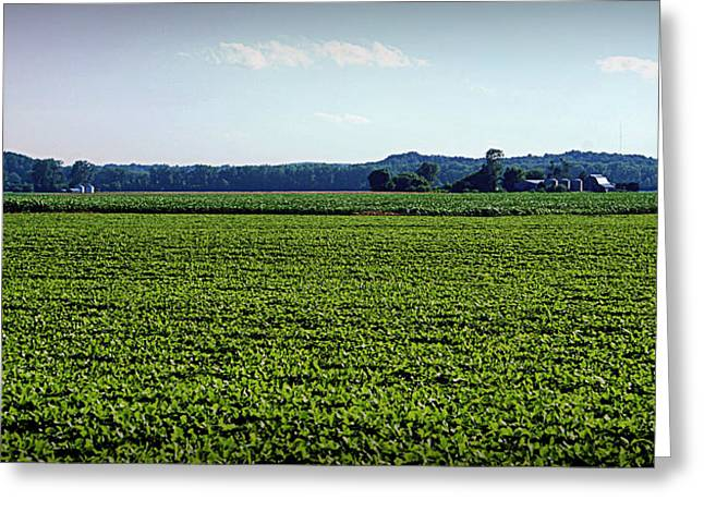 Hartsburg Greeting Cards - Riverbottom Farms Greeting Card by Cricket Hackmann