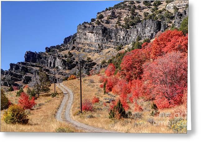 Road Travel Greeting Cards - Road Less Traveled - Blacksmith Fork Canyon - Utah Greeting Card by Gary Whitton
