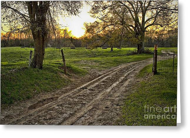 Road Less Traveled Greeting Card by Cris Hayes
