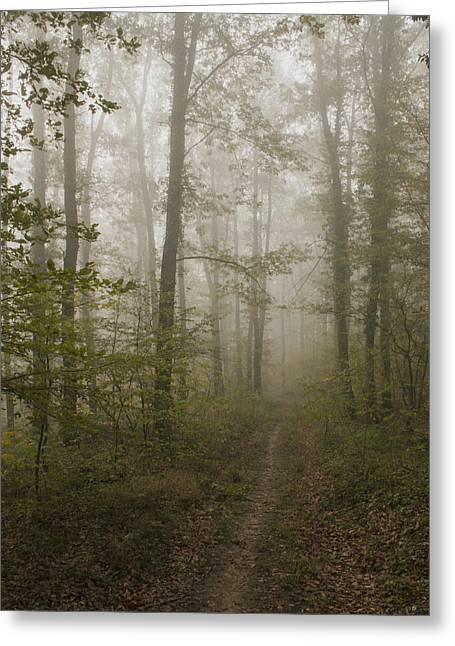 Insecurity Greeting Cards - Road of Insecurity Greeting Card by Daniel Csoka
