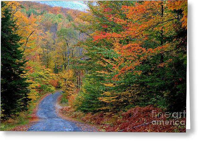 Road Through Autumn Woods Greeting Card by Larry Landolfi and Photo Researchers