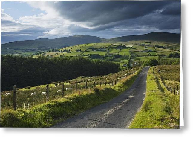Recently Sold -  - Mountain Valley Greeting Cards - Road Through Glenelly Valley, County Greeting Card by Gareth McCormack