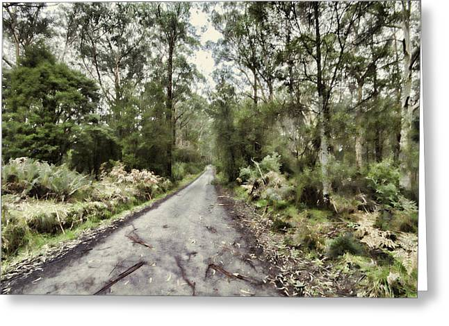 Gumtree Greeting Cards - Road Through the Forest Greeting Card by Douglas Barnard