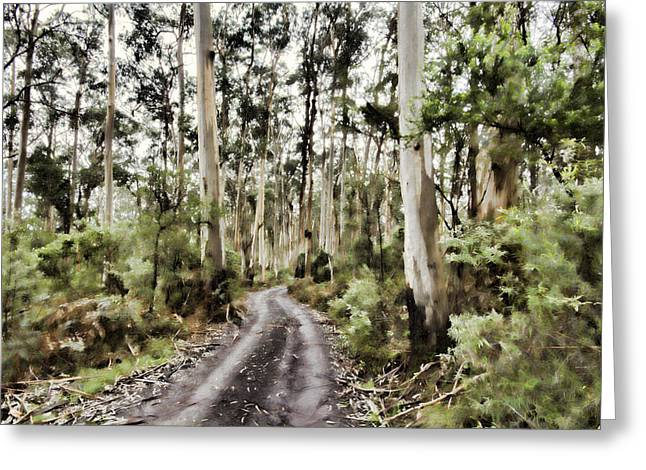 Gumtree Greeting Cards - Road through the Forest V2 Greeting Card by Douglas Barnard