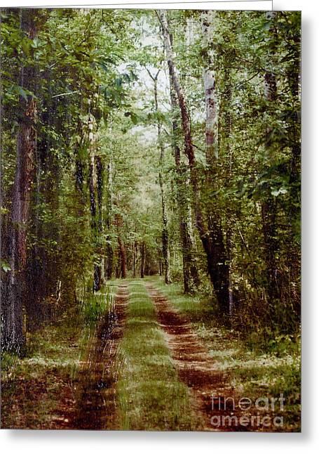 Road To Anywhere Greeting Card by Bob Senesac