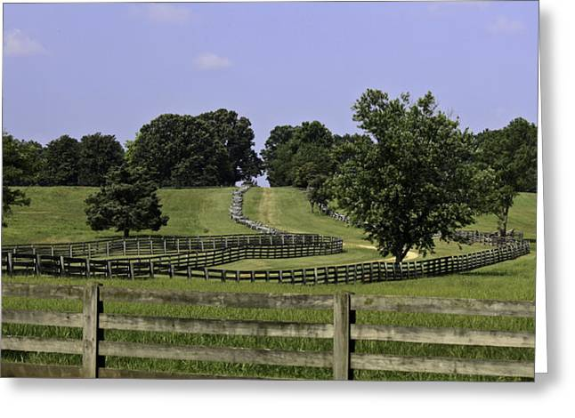 Richmond-lynchburg Stage Road Greeting Cards - Road to Lynchburg Greeting Card by Teresa Mucha
