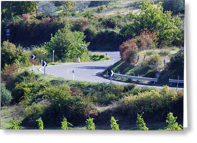Road Winding Through Vineyard and Olive Trees Greeting Card by Jeremy Woodhouse
