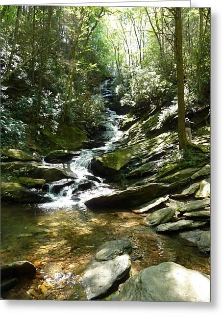 Roaring Fork Road Photographs Greeting Cards - Roaring Creek Falls - II Greeting Card by Joel Deutsch