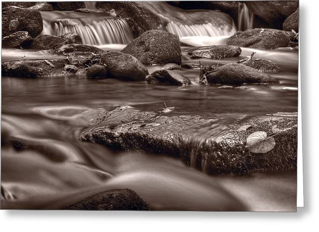 Tennessee River Greeting Cards - Roaring Fork Great Smokey Mountains BW Greeting Card by Steve Gadomski