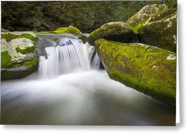 Gsmnp Greeting Cards - Roaring Fork Great Smoky Mountains National Park - The Simple Pleasures Greeting Card by Dave Allen